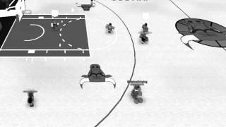ROBLOX NRBA BirdsAreChirping's Game Winning Shot