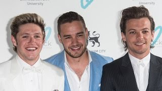 Niall Horan, Louis Tomlinson, Liam Payne Confirm One Direction Break, Not a Split!