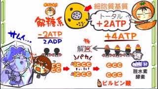 ★新課程生物発売決定★サンプル3「ATP合成酵素」