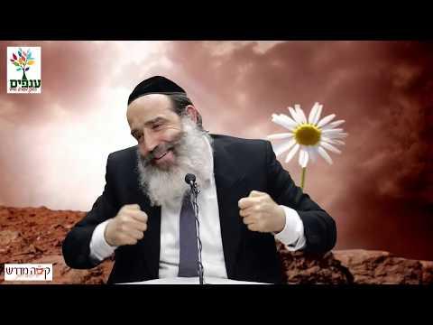 הרב יצחק פנגר - לפרוח גם במדבר HD - שידור חי