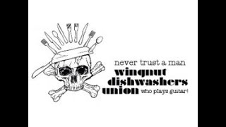 Watch Wingnut Dishwashers Union Alley Cat video