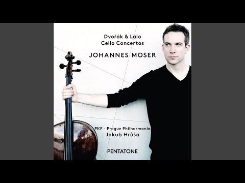 Cello Concerto In B Minor, Op. 104, B. 191: I. Allegro