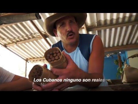 Viñales, Cuba Tobacco Farm Video Tour - Spanish Practice