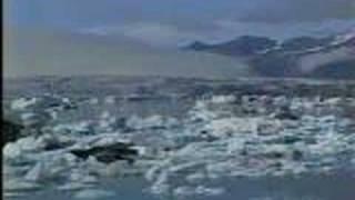 Asatru in Iceland - NextTV