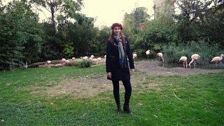 Германия, муж-тиран, автокино, франкфуртский зоопарк(Доброго времени суток!Мой канал о моих путешествиях,впечатлениях,жизни и опыте.https://www.youtube.com/channel/UCC1K... По..., 2016-11-01T07:44:35.000Z)