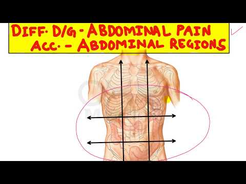 Differential Diagnosis of Abdominal Pain