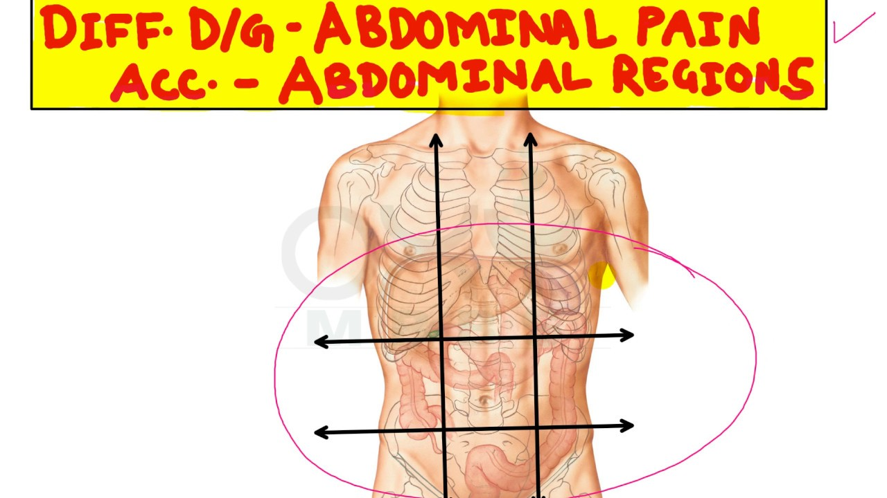 hight resolution of differential diagnosis of abdominal pain