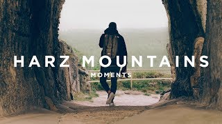 TRAMP CHAMP | MOMENTS @ HARZ MOUNTAINS 4K