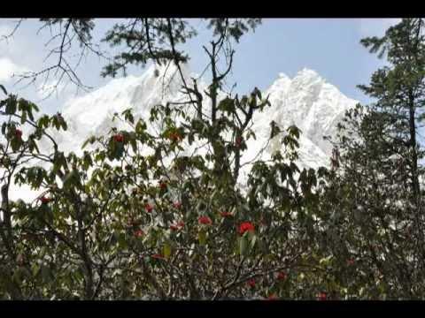 Traum-Trekkingrunde  um den Achttausender Manaslu, 8163 m mit Passübergang Larkya La, 5135 m