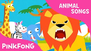 Hakuna matata Animal Songs PINKFONG Songs for Children