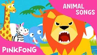 Hakuna matata | Animal Songs | PINKFONG Songs for Children