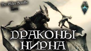 Известные драконы Нирна | TES Лор [AshKing]