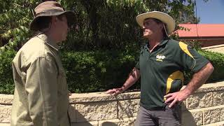 How a retaining wall can add impact for your garden with Indoors Outdoors