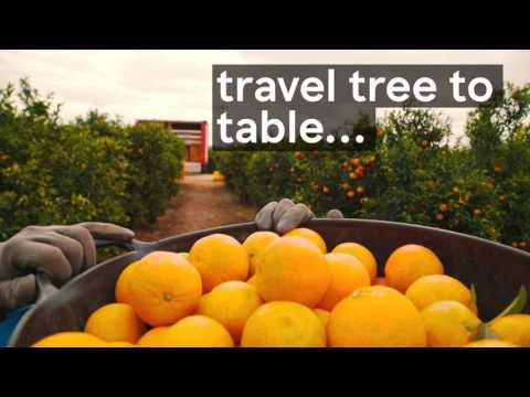 Food Waste: Bringing fresher fruit to Tesco customers