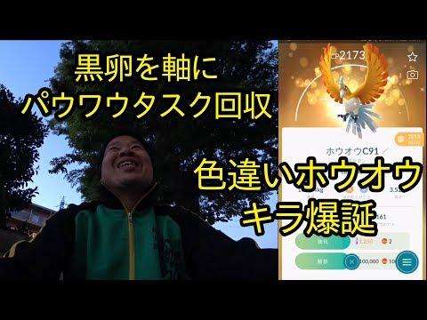 【ポケモンGO】黒卵を軸にパウワウタスク進行、そして色違いホウオウのキラ爆誕!