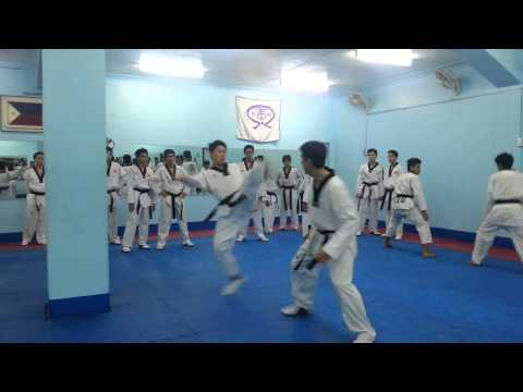The art of WTF Taekwondo  'offense-defense' study sparring
