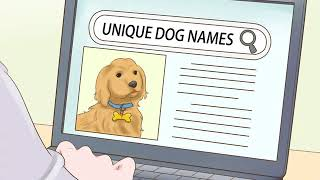 How to Find Unique Dog Names