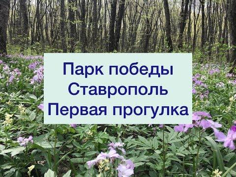 Наша первая прогулка. Парк Победы . Ставрополь