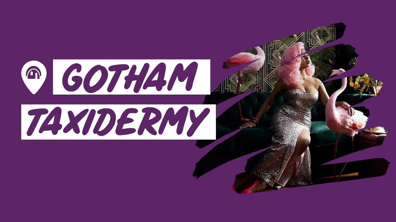 Gotham Taxidermy Home | 📍Brooklyn | Weird Homes Tour