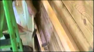 Строймаркет СНГ(База СНГ)-Делаем вагонку из липы . 2012г.(http://www.sng-shop.ru/catalog/vagonka-m/vagonka-lipa Строймаркет СНГ(База СНГ)-Делаем вагонку из липы . 2012г Липа является отличным..., 2011-12-05T14:14:23.000Z)