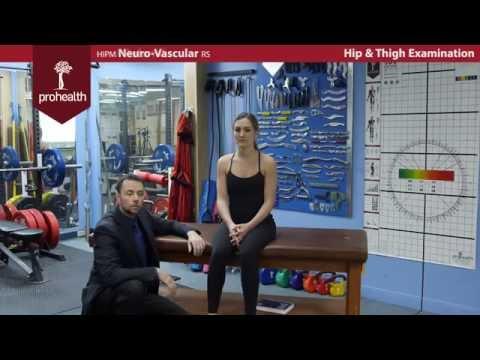 Hip & thigh Exam with Dr  Vizniak brief