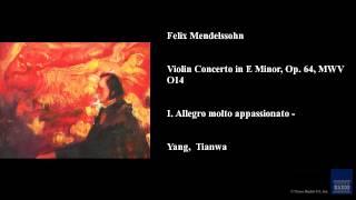 Felix Mendelssohn, Violin Concerto in E Minor, Op. 64, MWV O14, I. Allegro molto appassionato -