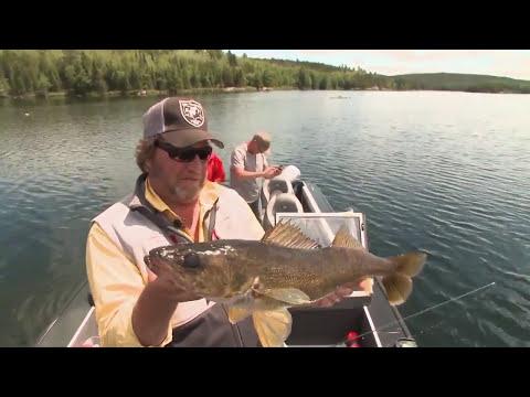Catching 10 Pound Walleyes on Dogtooth Lake in Kenora, Ontario Babe Winkelman Good Fishing