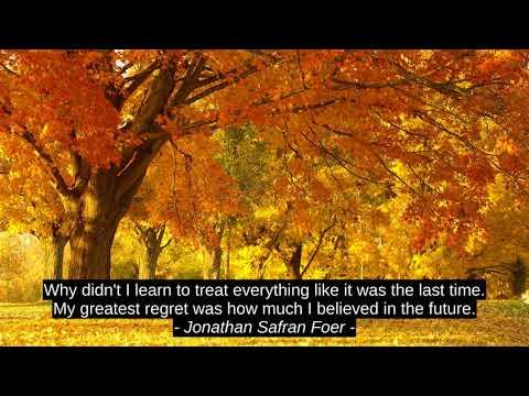 Top 3 Inspirational Cites - Jonathan Safran Foer