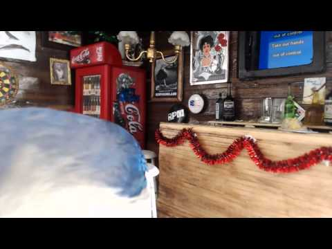 Junco's Pub: Two Blue Jays at Karaoke Night