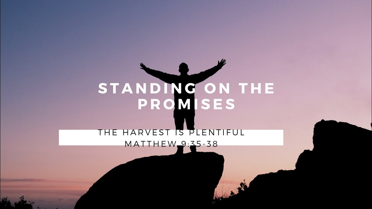 Standing on the Promise:The Harvest is Plentiful