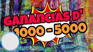 Ganas desde 1000 a 5000 dólares semanal
