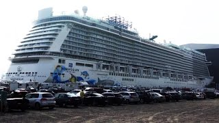NORWEGIAN ESCAPE - BEST OF FLOUT OUT
