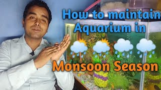 How To Maintain Aquarium in Monsoon Season/ We should use heater/How to Care Aquarium in Monsoon