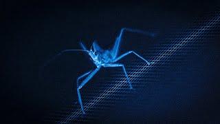 क्या डेंगू वास्तव में खतरनाक है ? How Dangerous is DENGUE?