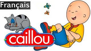 Caillou FRANÇAIS - Caillou Pour 4.5 Heures! | conte pour enfant | Caillou en Français