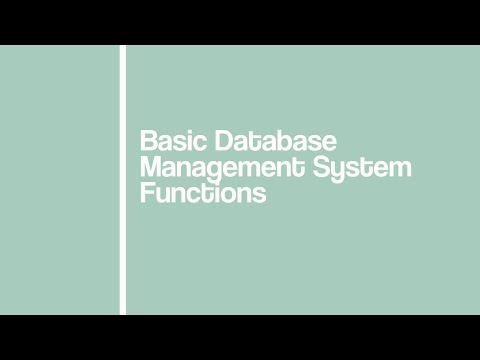 [MMS 144] Basic DBMS Functions: Data Storage And Update By Group 4