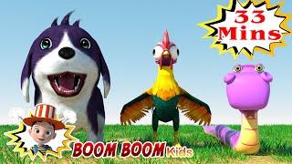 Bingo, Baby Shark and more nursery rhymes and kids songs | Boom Boom Kids