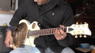guitar resonator jay turser