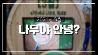 대전목재문화체험장 첫 방문기