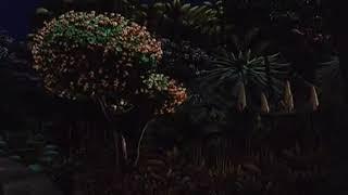Цитата из фильма   Мадагаскар   Ну и долго еще прикажите ждать