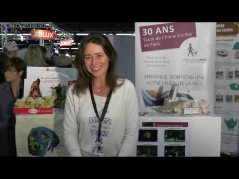 L'arche des associations - Association Chiens Guides de Paris