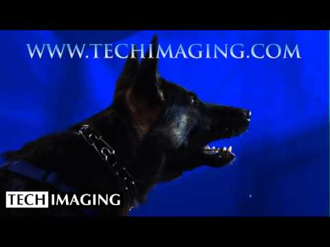 High Speed Camera Video - Dog Barking