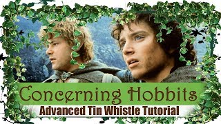 Concerning Hobbits - Shire Theme - ADVANCED TIN WHISTLE TUTORIAL