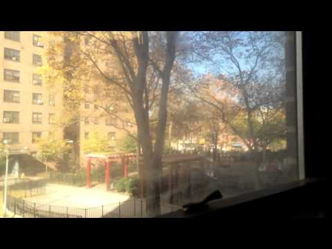 """NYC PUBLIC HOUSING"" (checking out a vacancy)"