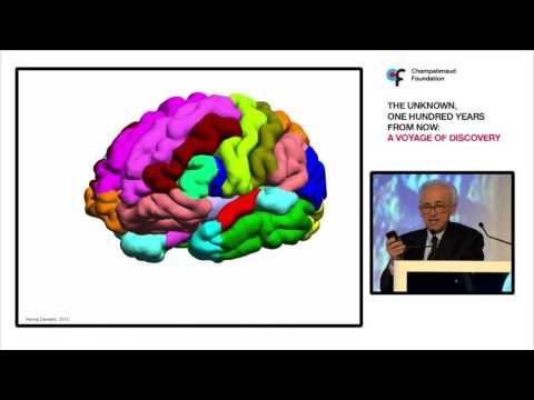 António Damásio: Neuroscience, Medicine and a New Society