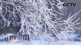 [中国新闻] 踏雪迎新 北国美景如画 黑龙江逊克:天上胜景现人间 奇幻雾凇惹流连 | CCTV中文国际