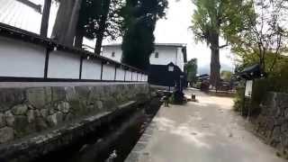 飛騨古川の瀬戸川を泳ぐ鯉たち