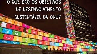 O que são os Objetivos de Desenvolvimento Sustentável da ONU?