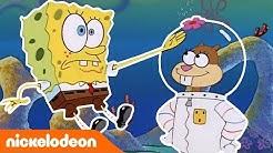 SpongeBob Schwammkopf | Treffen mit einem Eichhörnchen | Nickelodeon Deutschland