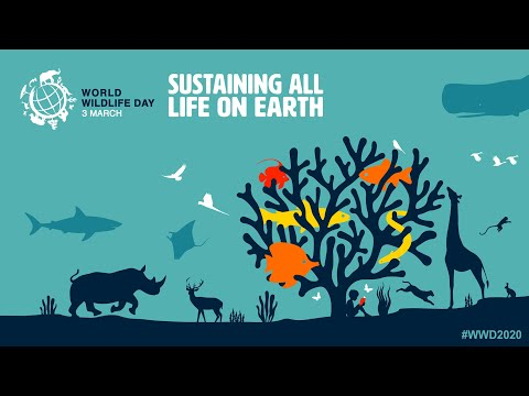 world-wildlife-day-2020---sustaining-all-life-on-earth